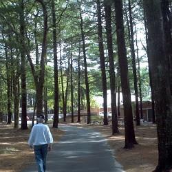 Разходката също е начин за отслабване - Фитнес БГ