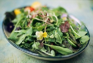 7 храни, които ще ви помогнат в отслабването - Фитнес БГ